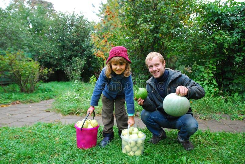 En vagn med en stapel av fallna leaves Skörd av äpplen Flicka och pojke i trädgården arkivfoton