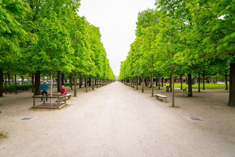 En vandringsled i den Tuileries trädgården i Paris, Frankrike royaltyfri bild