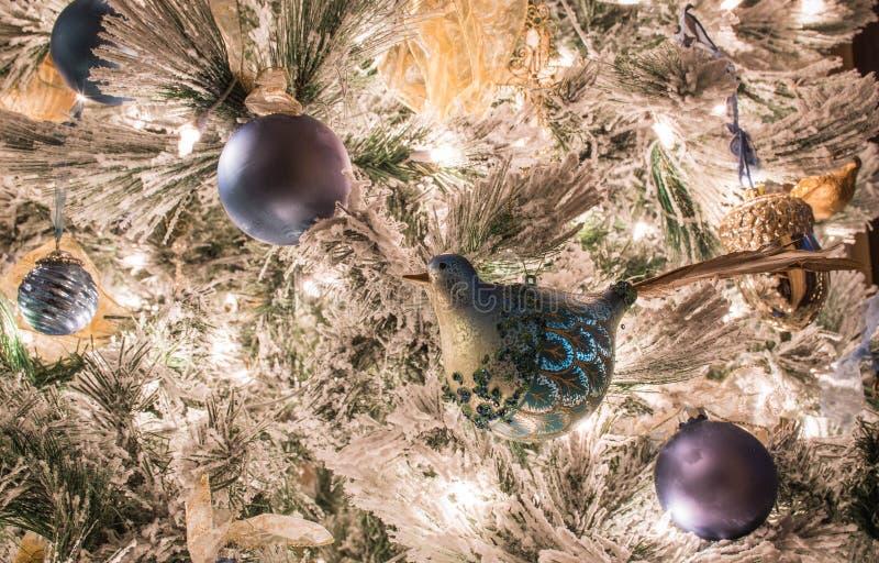 En variation av blåa julprydnader på en flockas julgran royaltyfria foton