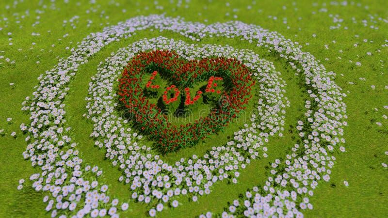 En variation av blommor i formen av en hjärta på ett grönt fält, som ett symbol av dagen och förälskelse för valentin` s royaltyfri bild