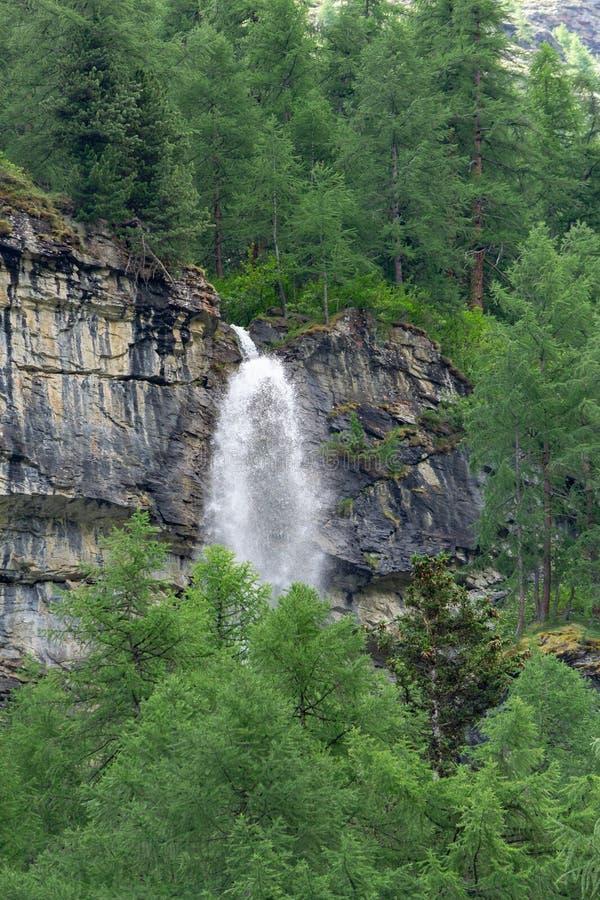 En vattenfall bryter till och med berget i skogen royaltyfri fotografi