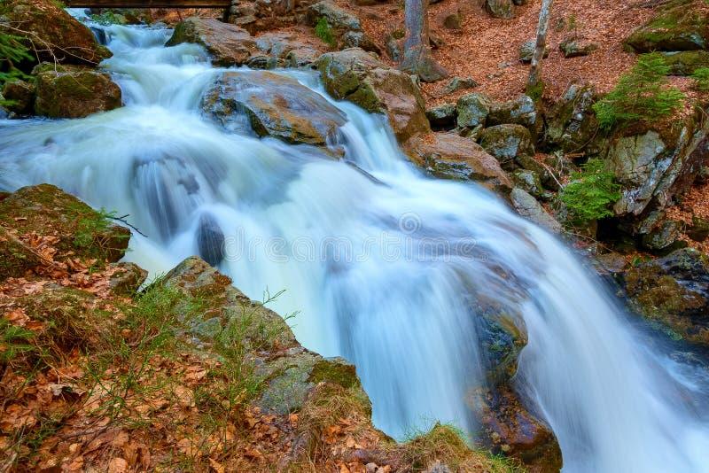 En vattenfall i skogen arkivfoton