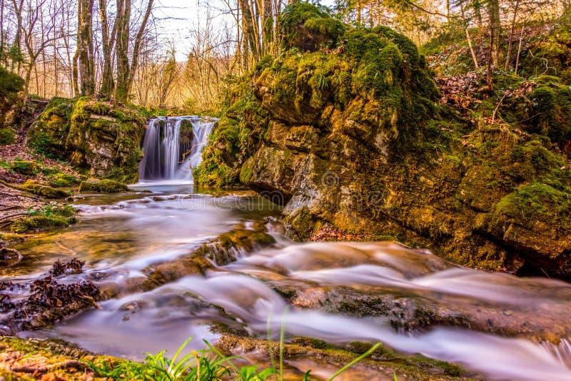 En vattenfall i strömmen i skogen royaltyfri bild