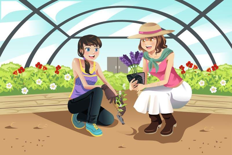 Plantera i växthus stock illustrationer