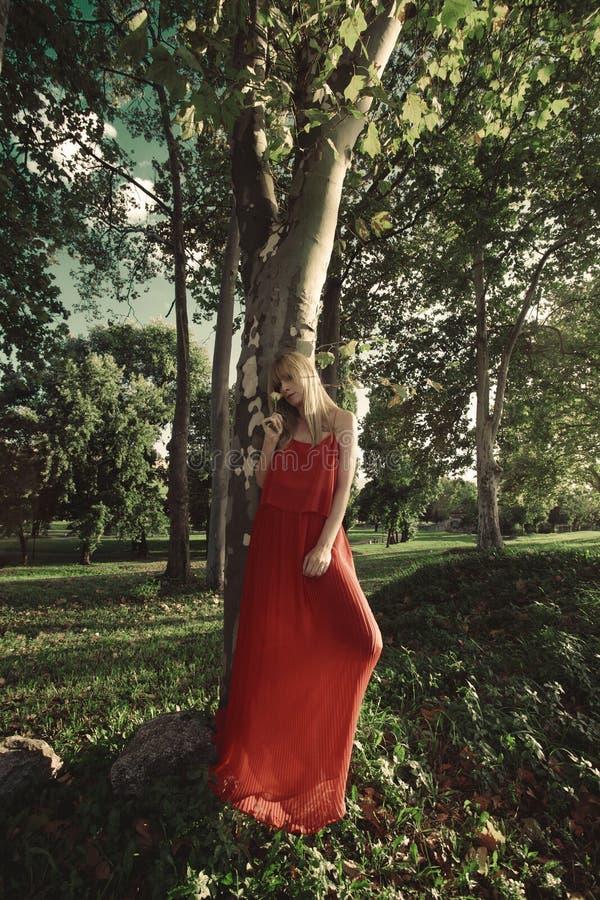 en vestido rojo fotos de archivo libres de regalías