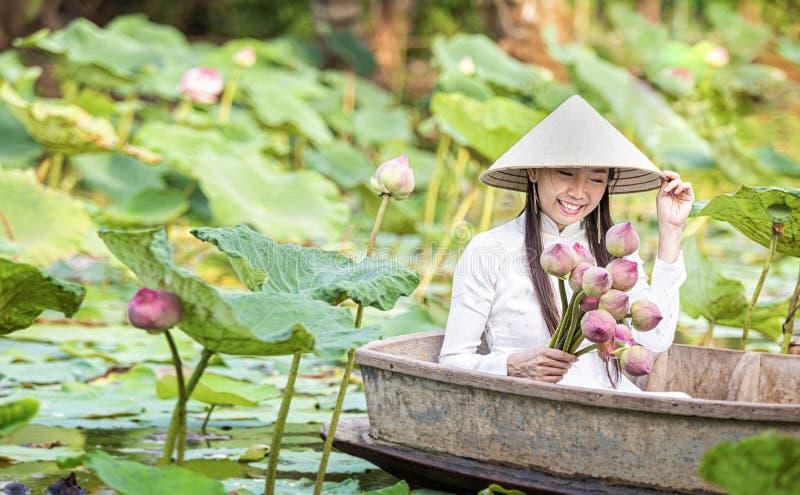En vietnamesisk kvinna sitter på ett träfartyg och samlar rosa lotusblommablommor Kvinnlig rodd på sjöskördnäckrors arkivfoto