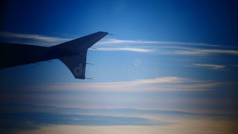 En vinge i himlen royaltyfri foto