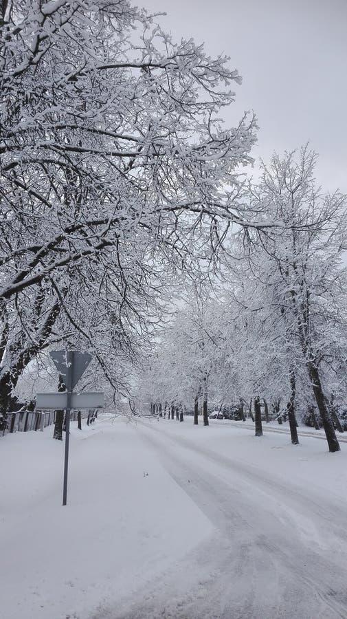 En vinter är rolig arkivbild
