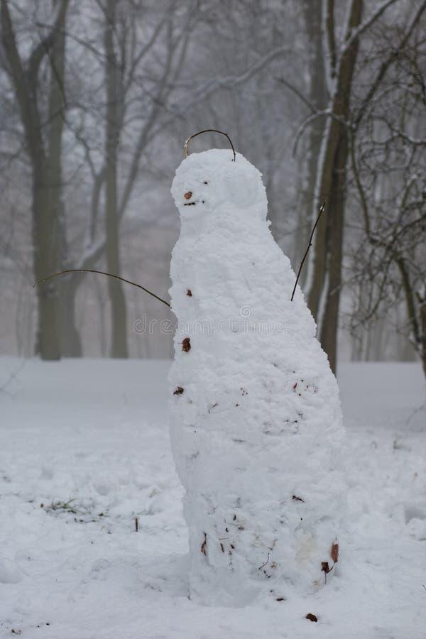 En vintersnögubbe som göras i en stad, parkerar Snögubbeanseende i en snö arkivfoton