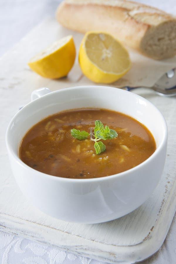 Mulligatawny Soup royaltyfri fotografi