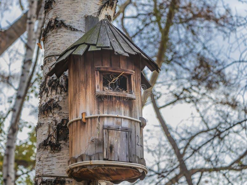 En voljär för fåglar från bruna gamla bräden hänger på ett träd för vit björk arkivbilder
