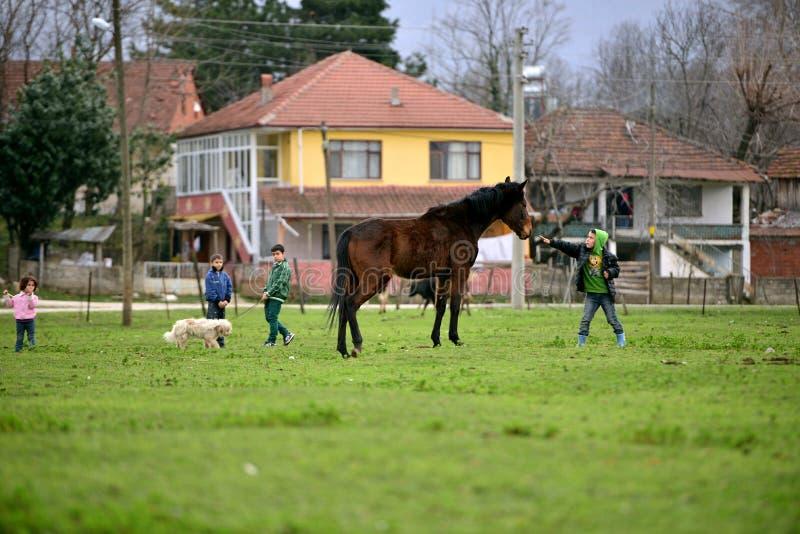 En zonas rurales, niños que aman animales fotografía de archivo libre de regalías