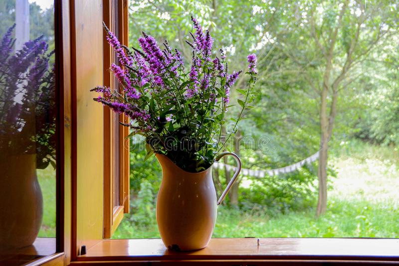 Enamel jug with purple flowers. (lavender) on a window sill looking out into a wild garden stock photography