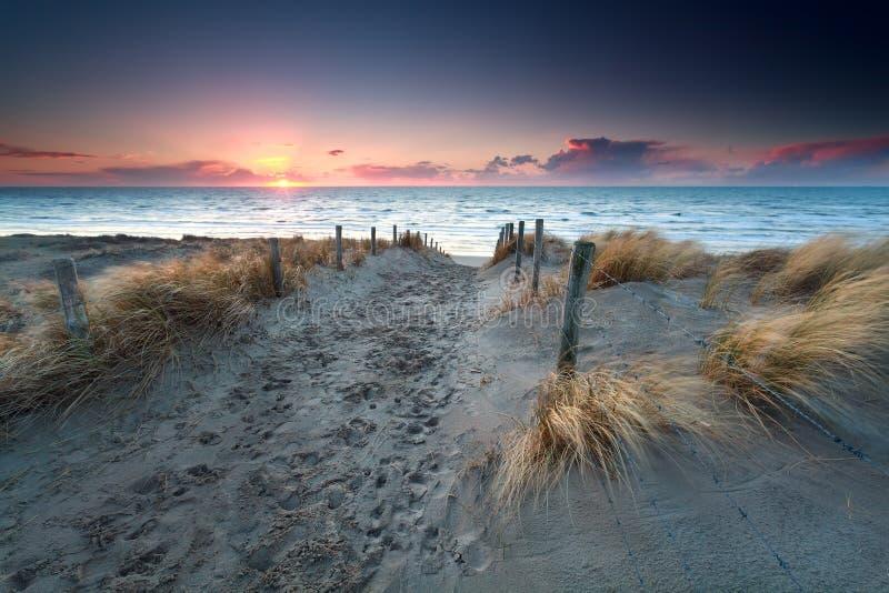 Enarene la trayectoria a la playa de Mar del Norte en la puesta del sol foto de archivo libre de regalías