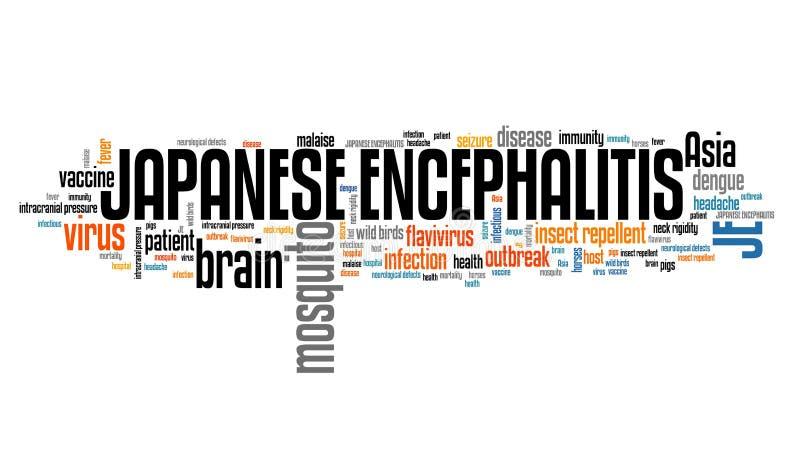 Encéphalite japonaise illustration stock