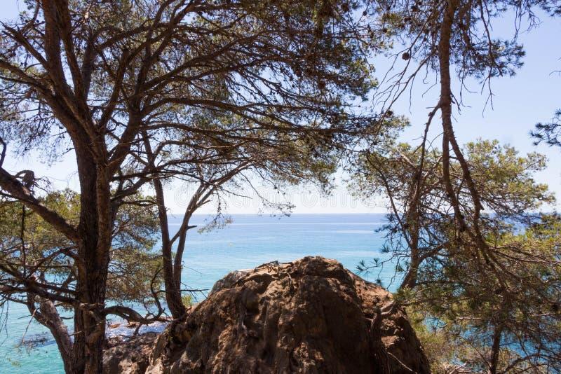 Encadrement naturel d'océan photos libres de droits