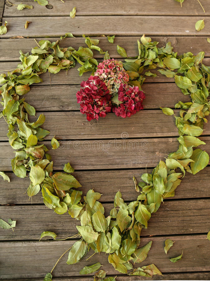 encadrez le petit morceau le vieux plancher en bois et les feuilles d'automne tombent et des fleurs images stock