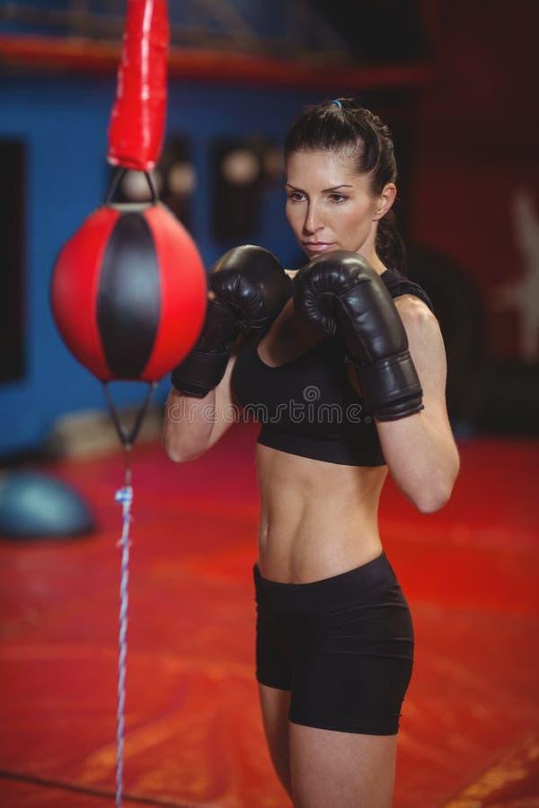 Encajonamiento practicante del boxeador de sexo femenino con la bola del boxeo de la velocidad fotografía de archivo libre de regalías