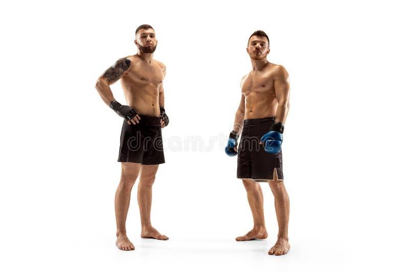 Encajonamiento profesional de dos boxeadores aislado en el fondo blanco del estudio fotografía de archivo libre de regalías