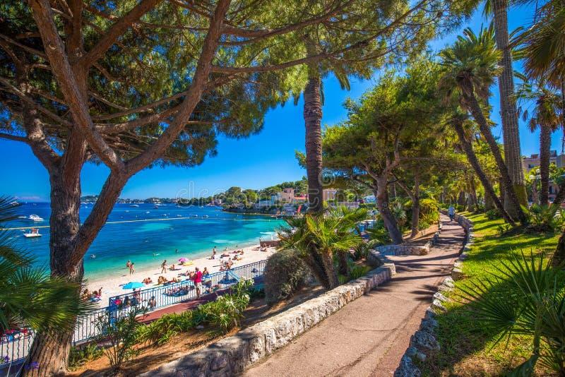 Encalhe o passeio na vila com palmeiras, riviera francês de Beaulieu-sur-MER, França foto de stock royalty free