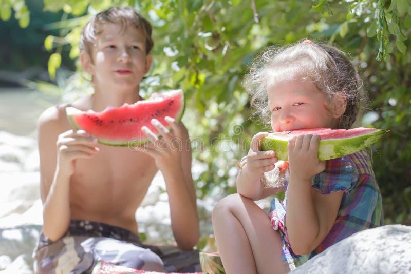 Encalhe o piquenique com a melancia suculenta de dois irmãos na máscara imagem de stock