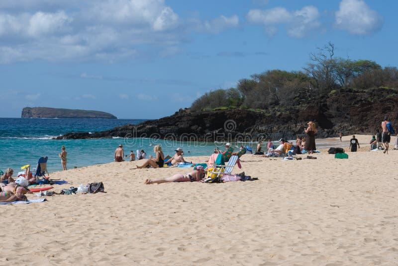 Encalhe a vida no parque da praia de Mokapu na ilha havaiana de Maui foto de stock