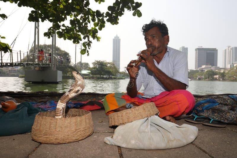 Encantador de serpente de Colombo em Sri Lanka imagens de stock