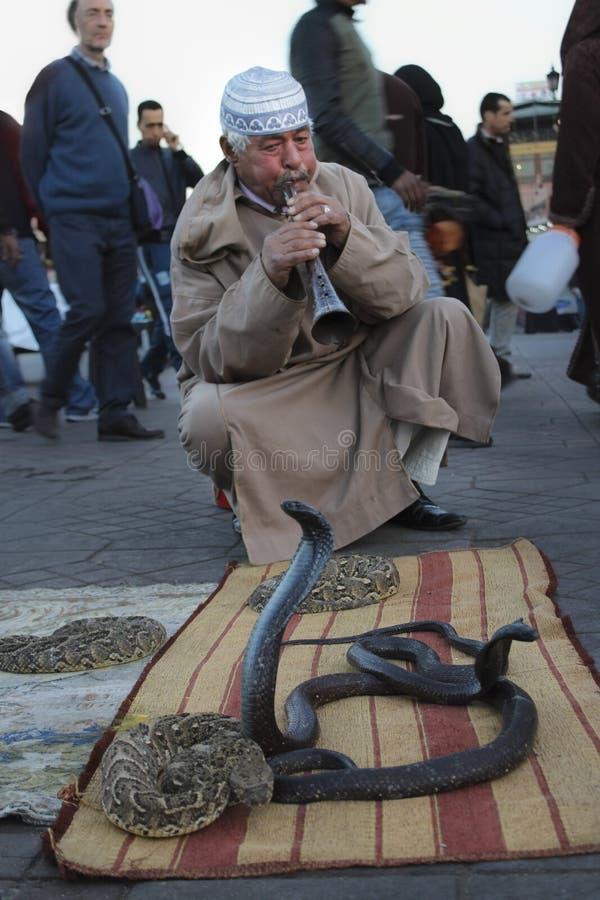 Encantador de serpente em C4marraquexe, Marrocos imagens de stock