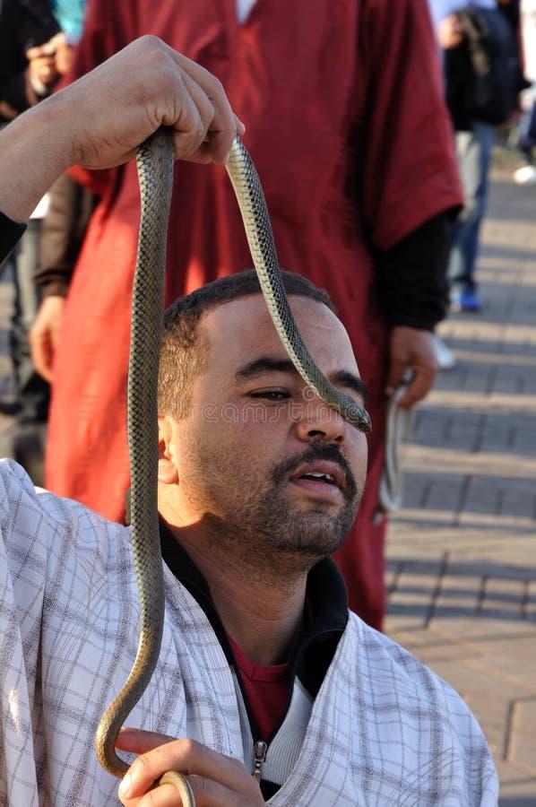 Encantador de serpiente en Marrakesh fotos de archivo