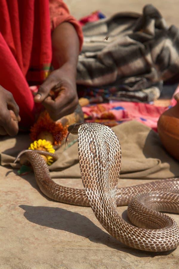Encantador de serpiente pasado (Bede) de Benares fotografía de archivo