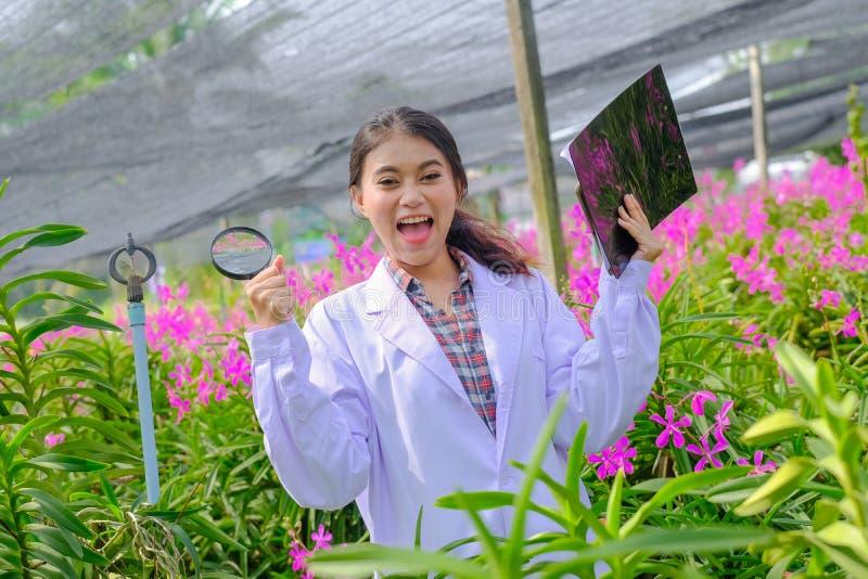 Encantan a los investigadores en orquídeas en blanco con la investigación de la orquídea de los resultados fotos de archivo libres de regalías