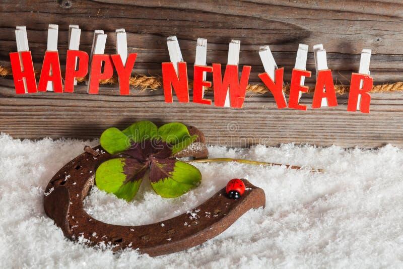 Encanto afortunado pelo ano novo imagens de stock royalty free