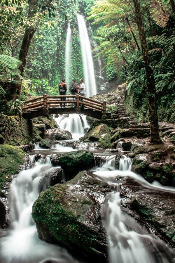 Encanto natural indonésio imagens de stock