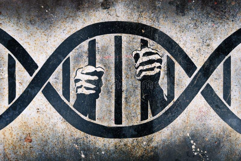 Encarcerado na gaiola do ADN imagem de stock royalty free