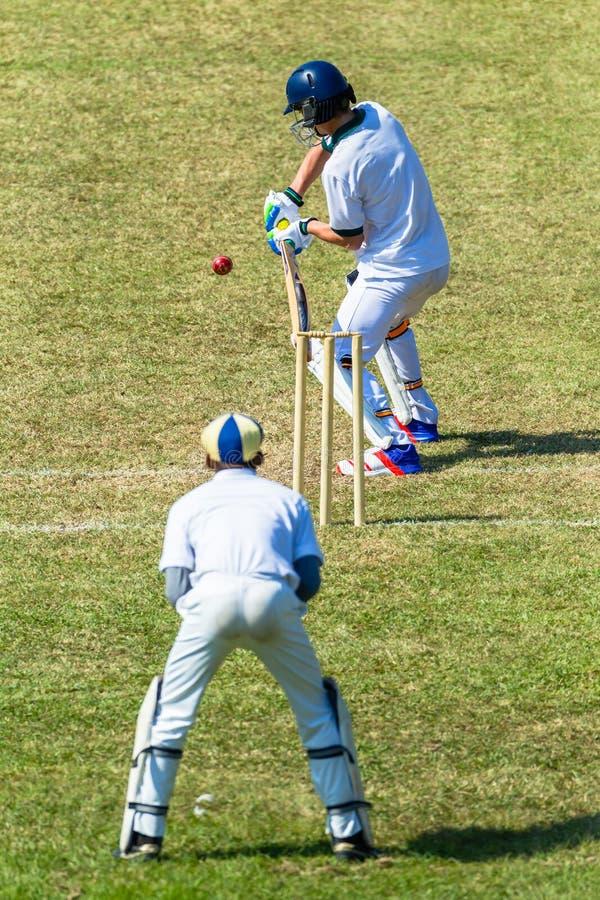 Encargado del wicket del bateador de la acción del juego del grillo imagen de archivo libre de regalías