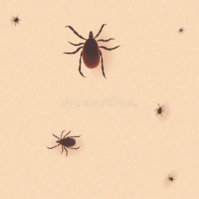 Encephalitis tick. Mite skin dust parasite vector icon illustration. royalty free illustration