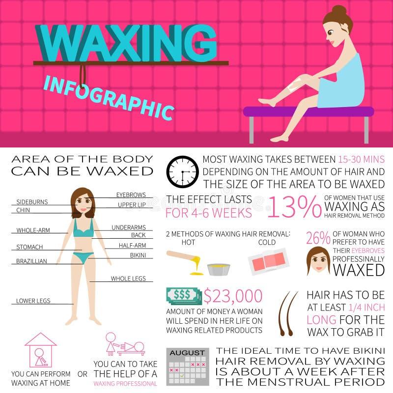 Encerando o infographics Informação e fatos sobre a remoção do cabelo imagens de stock