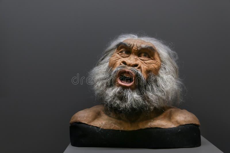 Encere la cara de la persona primitiva en un museo histórico imagen de archivo