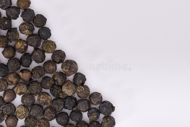 Encerramento de Peppercorns secos em branco imagens de stock