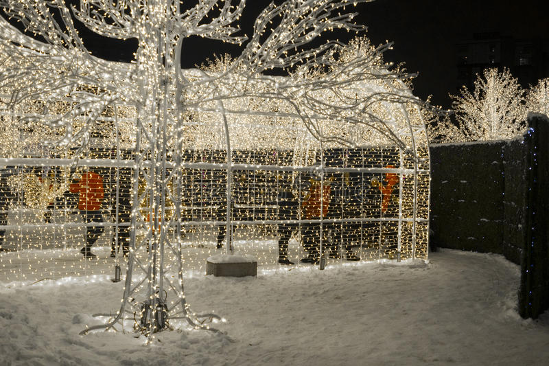 Enchant Christmas Light Maze and Market. Vancouver 2016 stock photos