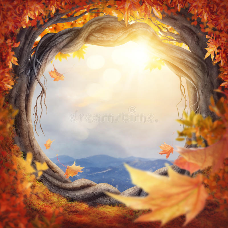 Enchanted autumn forest. Enchanted dark forest at the fall stock image