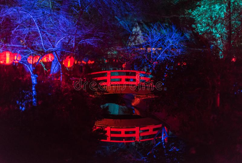 Enchanted forest - beautiful Japanese garden at night royalty free stock image