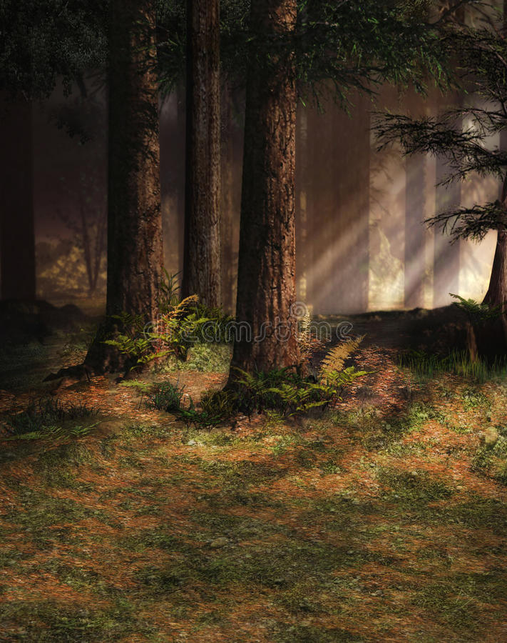 Enchanted forest stock illustration
