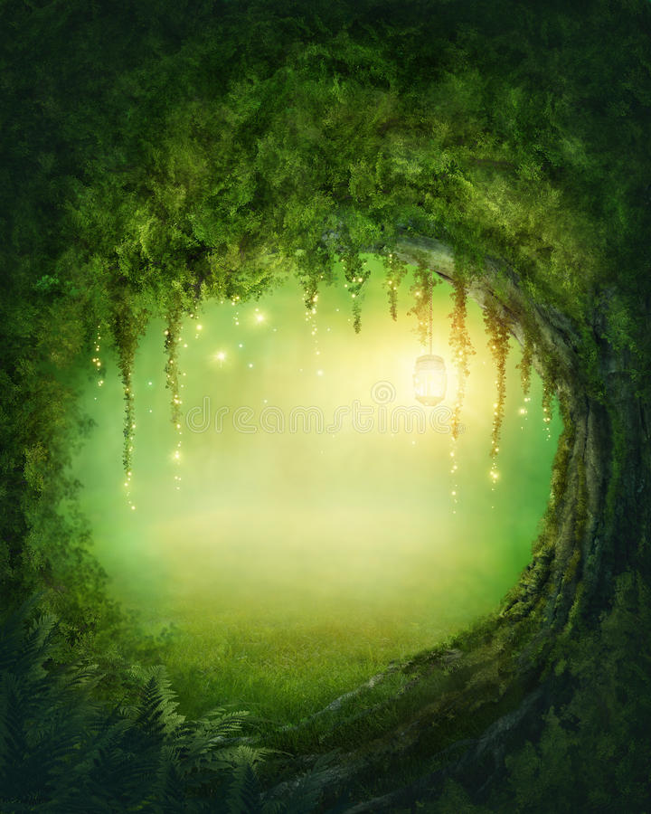 Enchanted forest stock images