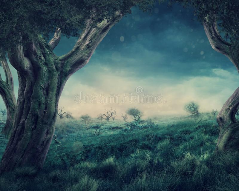 Enchanted forest. In the night vector illustration