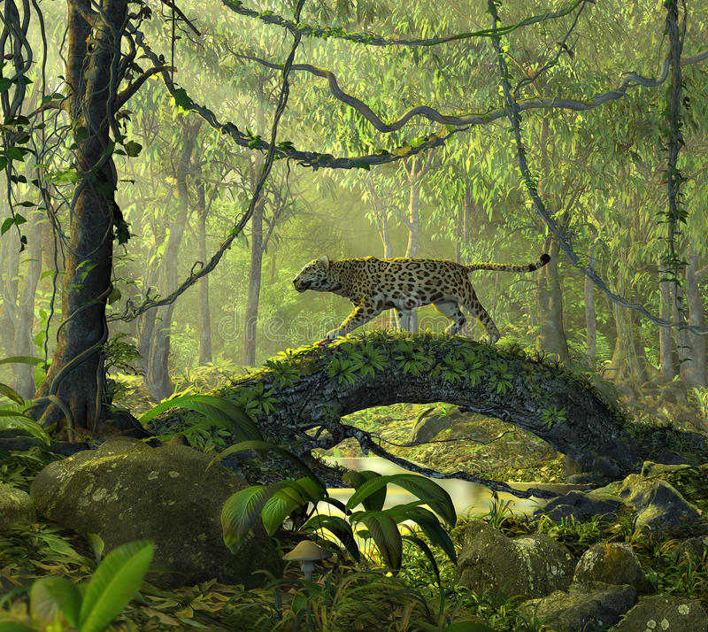 Enchanted Jungle Forest with a Panther Cat. 3D render of a beautiful enchanted jungle forest with an alert panther cat crossing a pond vector illustration