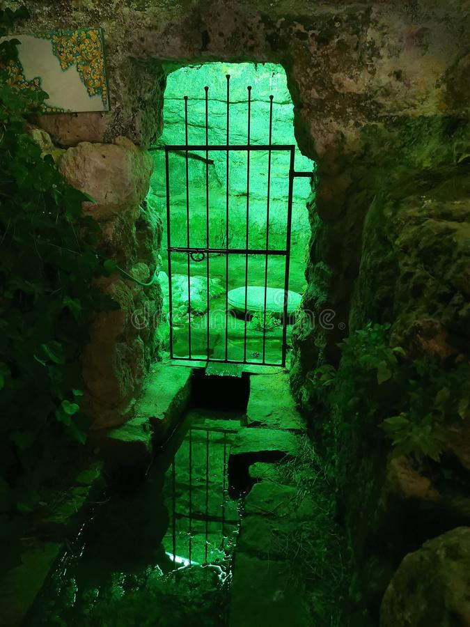 Enchanted magical green prison cave royalty free stock photography
