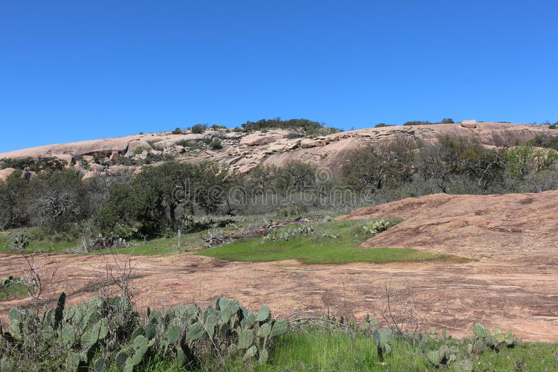 Enchanted rock summit trail with vegetation royalty free stock images