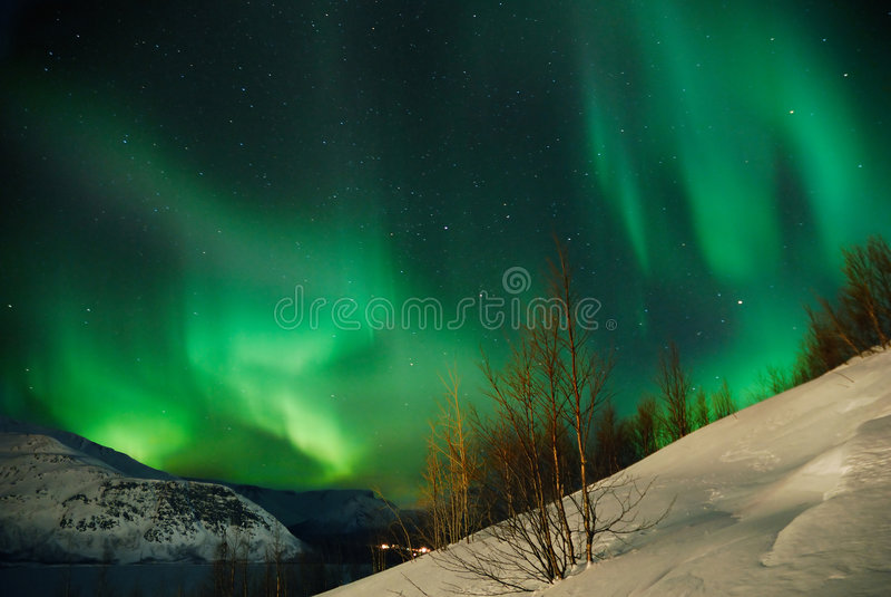 enchanting полуночное зрелище стоковое фото
