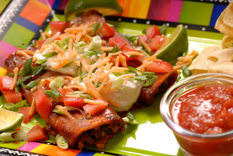 Enchiladas And Tortilla Chips Stock Image
